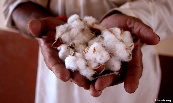 kala cotton frayed history