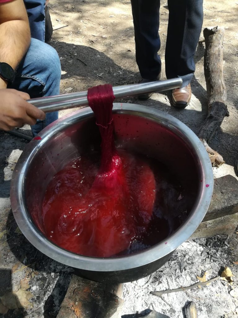 Natural dyeing process
